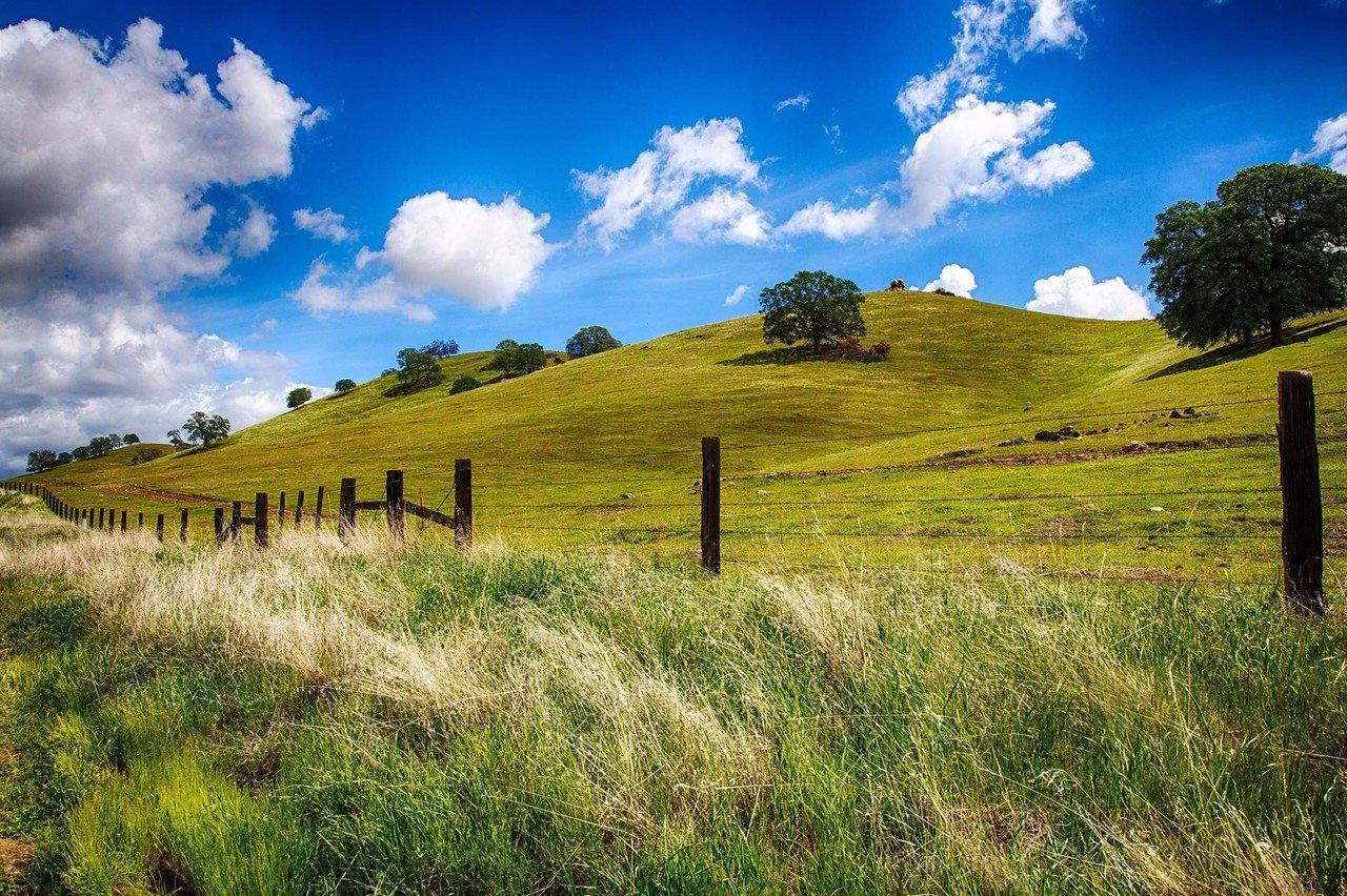 Rolling hills in Fresno, California